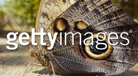 getty-butterfly-camera-crew-barcelona-josep-gutierrez